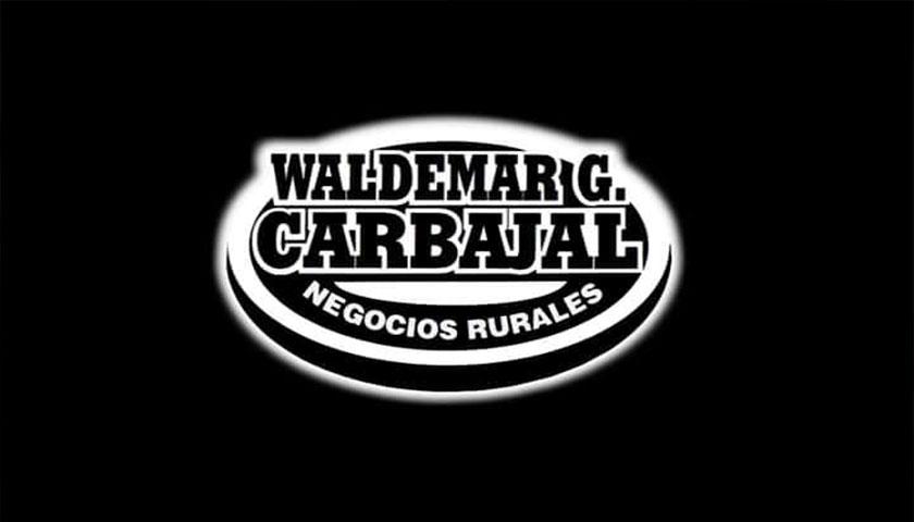 Waldemar Carbajal informa sobre sus próximas actividades para este mes
