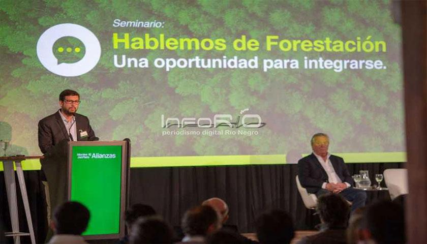 En 10 años 350 productores han integrado la forestación a sus predios con Montes del Plata