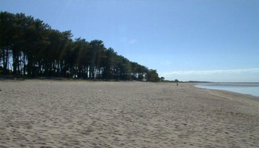 Clasificación de las aguas de las Playas del Departamento de Colonia